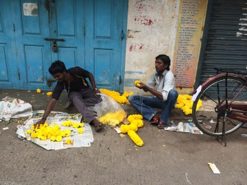 Making leis for temple offerings. Chennai, India