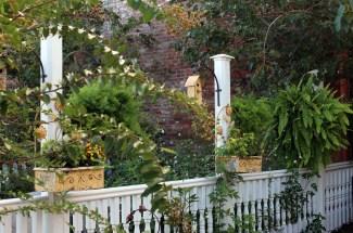 Just another beautiful garden.