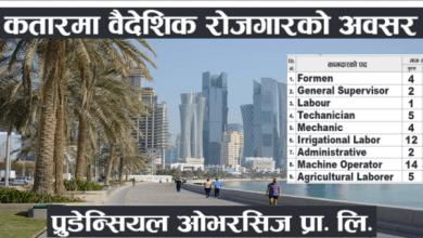 vacancy in qatar