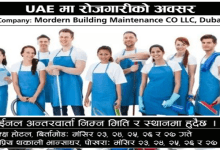 Photo of 450 Male Female Candidate Required for Cleaner Jobs in Uae