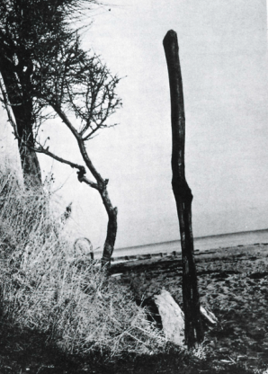 A bog idol representing an earth goddess, found in 1961 and re-erected at Foerlev Nymolle. The carving is nine feet high and would have dominated the flat landscape of the bog.