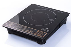 Duxtop 8100MC Portable Burner