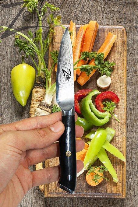 best paring knife zelite infinity