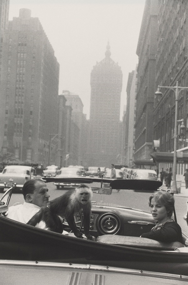 Garry Winogrand,Park Avenue, New York  © The Estate of Garry Winogrand, courtesy Fraenkel Gallery, San Francisco