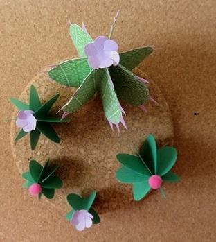 17.cactus en papier