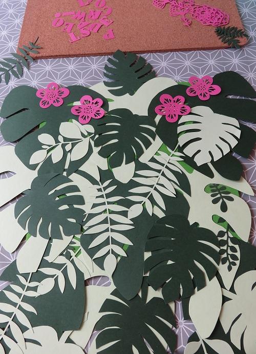5.Paradis tropical