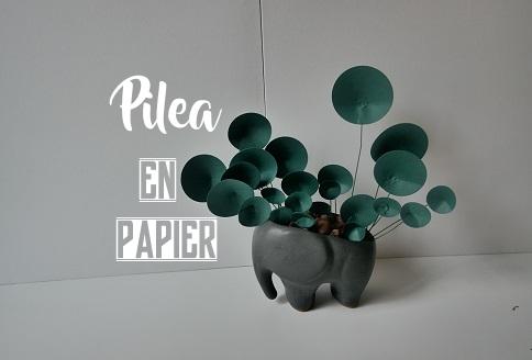 02. DIY PILEA PAPER