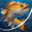 Fishing Hook Mod 2.1.4 Apk [Unlimited Money]
