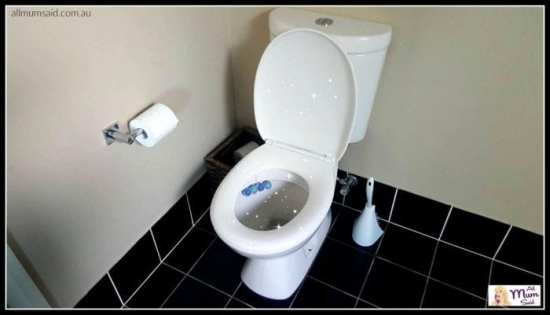 What To Expect From Your Toilet When You Live With Males