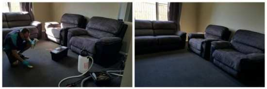 hipages carpet cleaning
