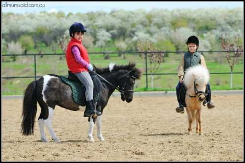 Hunter Valley horse riding | kids riding horses