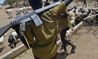 Herdsmen with gun