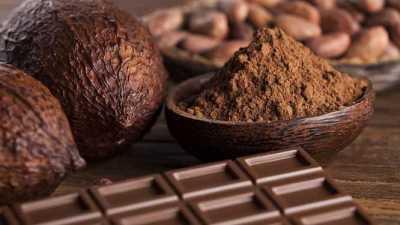 الشوكولاتة الداكنة لانقاص الوزن