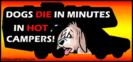 Warning - Dogs Die in Hot Cars and Campers