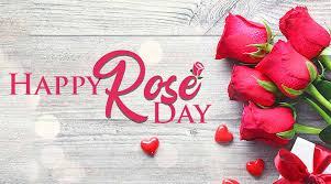 rose day pic