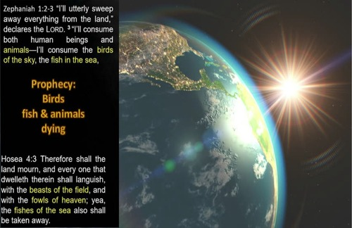 Hosea_and_Zephaniah.jpg