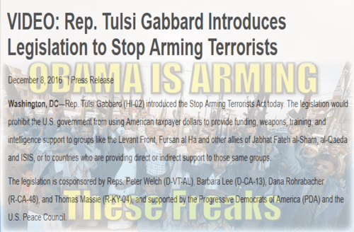 stop_arming_terrorist_obama_you_freak.png