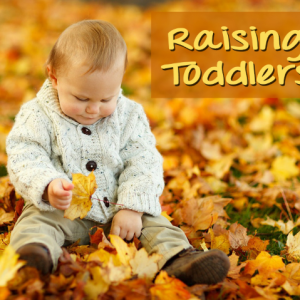 10 Toddler Years Articles