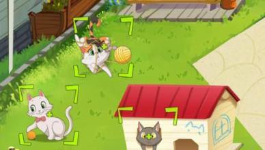 kitty home screen
