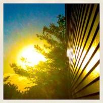Sunrise - Texture