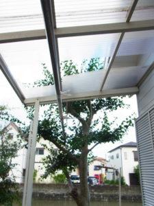 台風7号で剥がれた縁側のトタン屋根