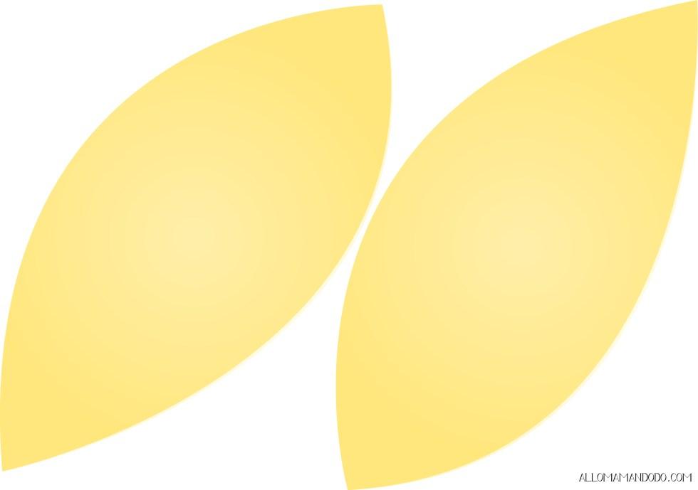 ailes hibou jaune