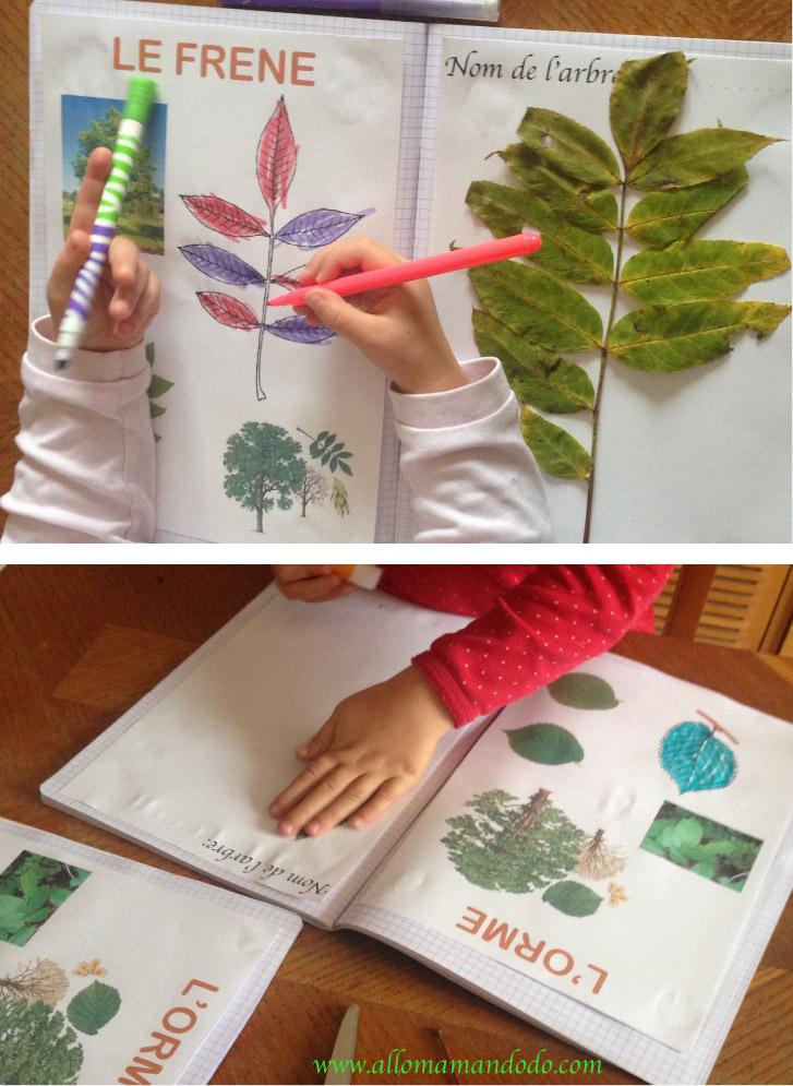 feuilles d'arbre cahier