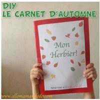 DIY: Vive la forêt, fabrique ton herbier! (Activité Carnet d'automne!)