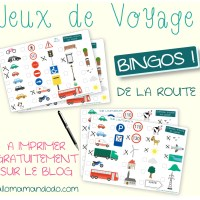 """Les Occuper en Voiture: Jeux de Voyage """"bingo de la route"""" à imprimer!"""