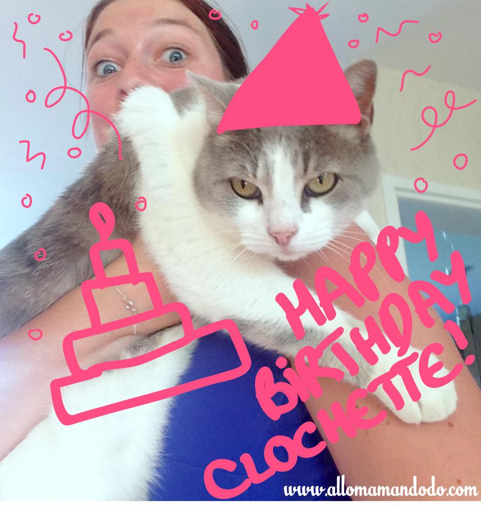 bon anniversaire chat