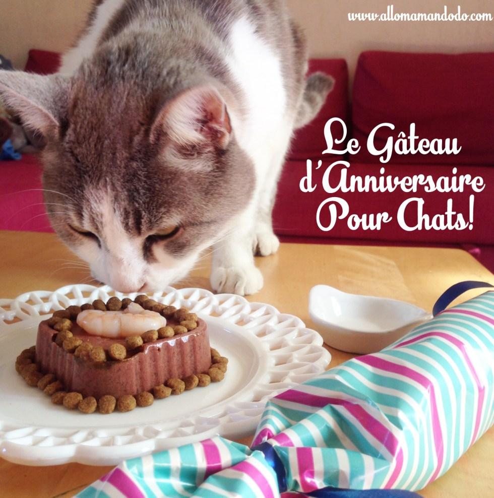 gateau anniversaire chat