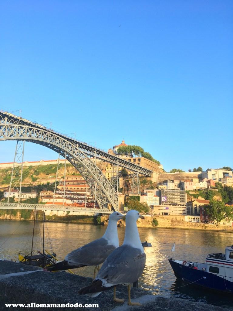 pont porto abritel homeaway