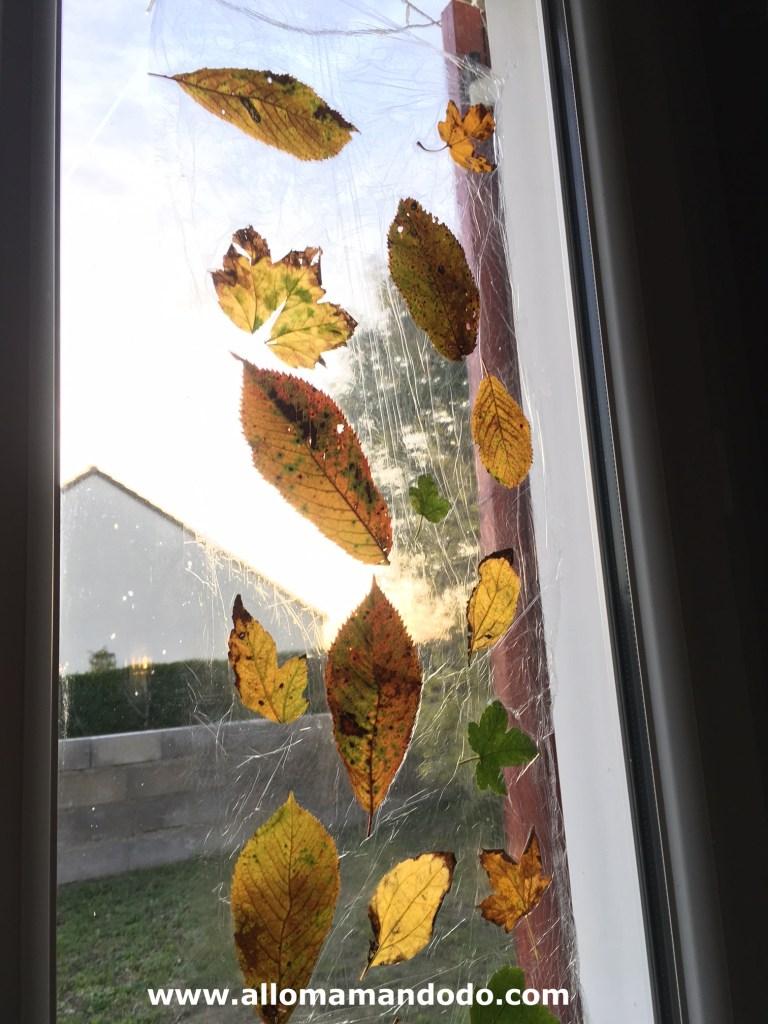 deco fenetre automne