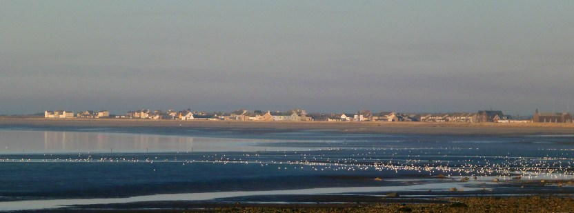About Allonby