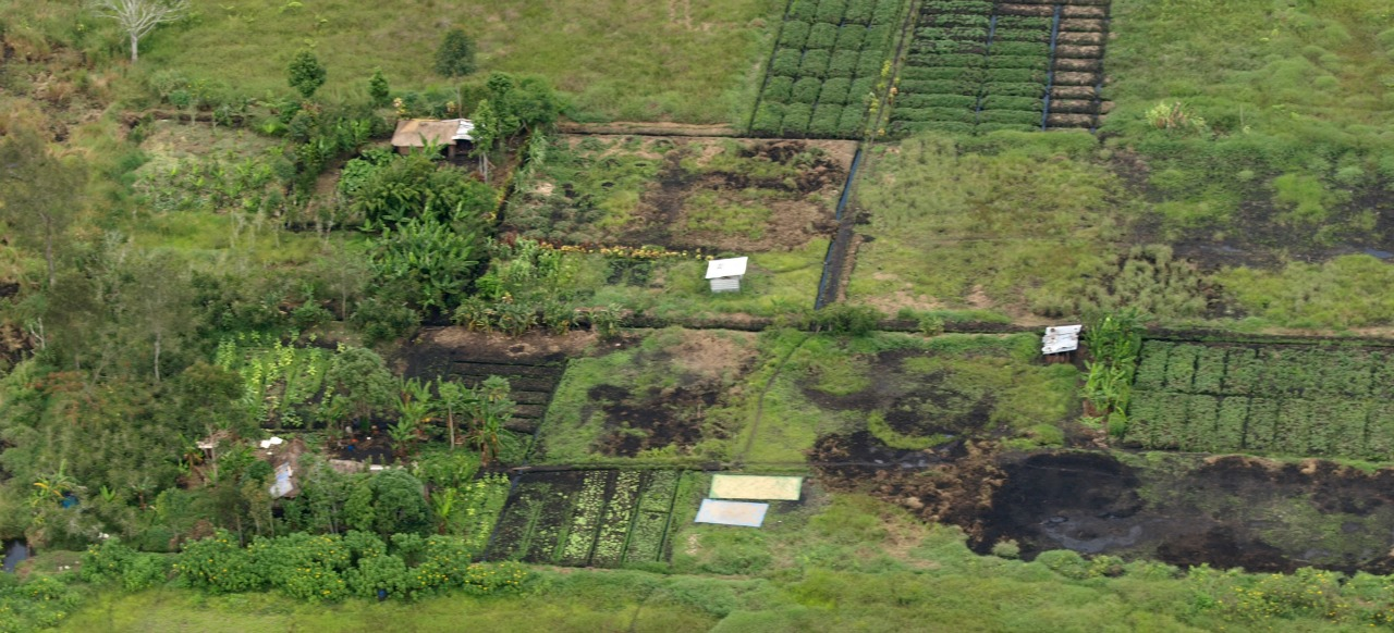 Farming of carbon is not carbon farming