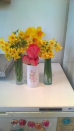 Vases 1