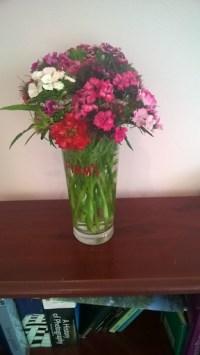 Vase sweet williams