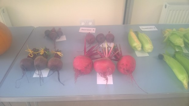 beetroot-table-1