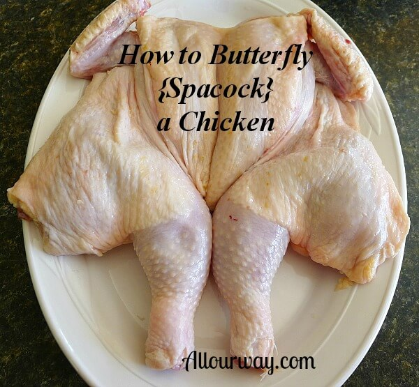 How to Butterfly or spacock a whole chicken at Allourway.com