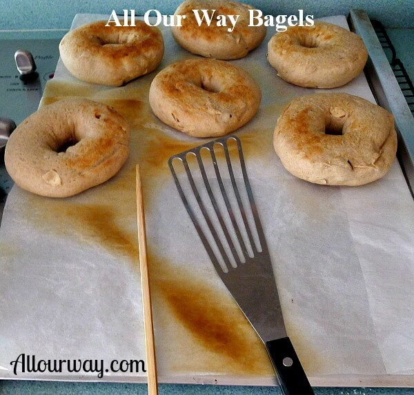 Six Browned bagels on a cookie sheet with a chop stick, slotted spatula