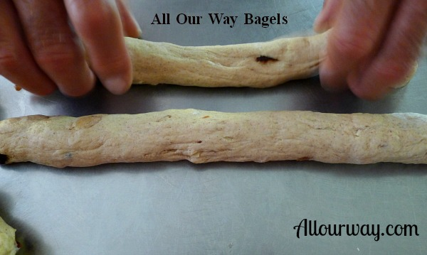 2 homemade bagel ropes of dough, 10 inches long