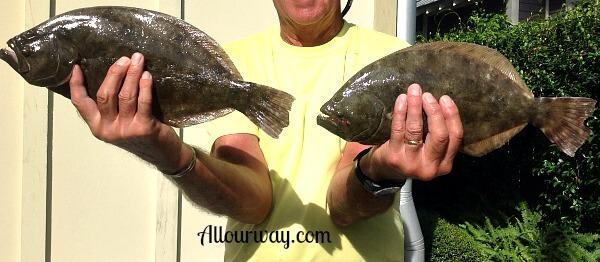 Flounder at SSI
