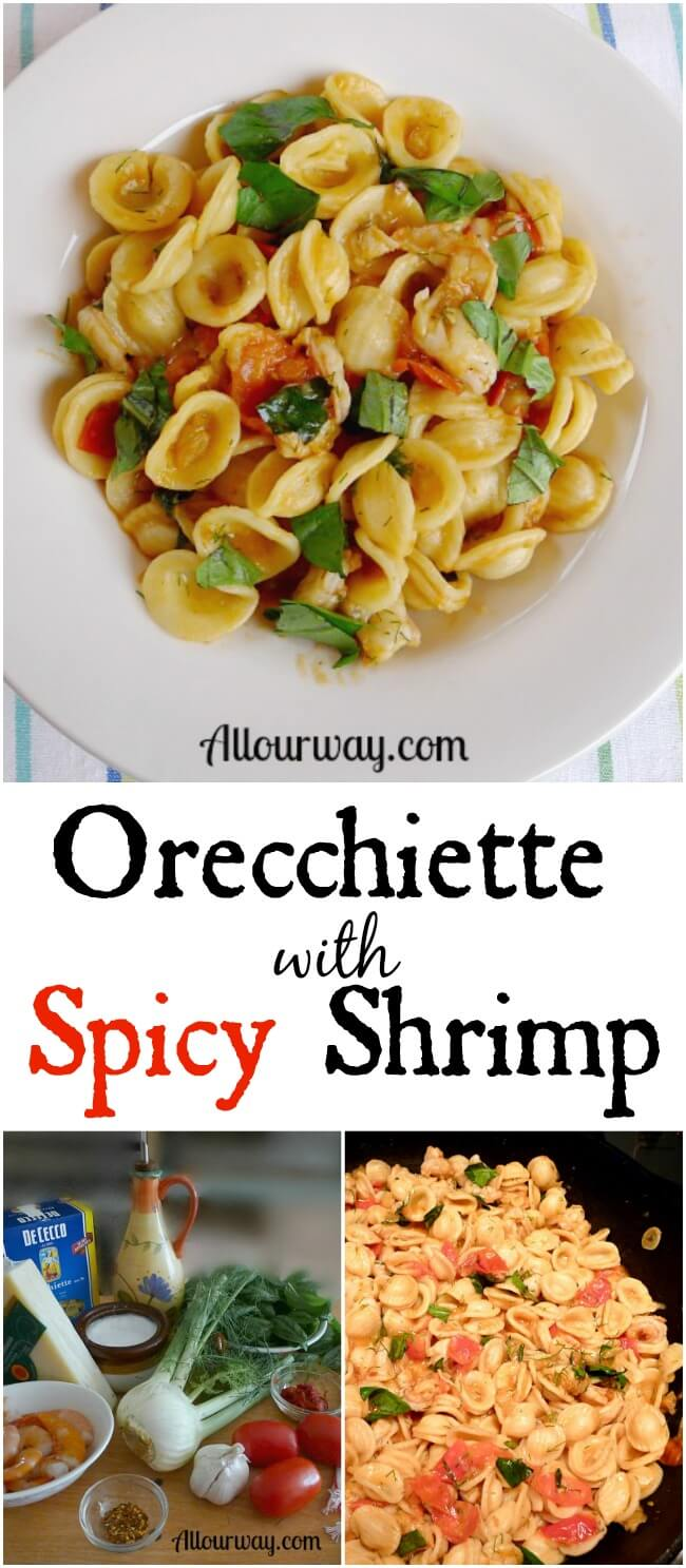 Orecchiette with Spicy Shrimp a one-pan meal that is quick and easy as a stir fry.