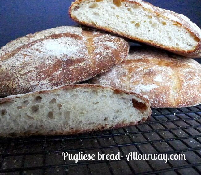 Pugliese bread had the open crumb like ciabatta @allourway.com