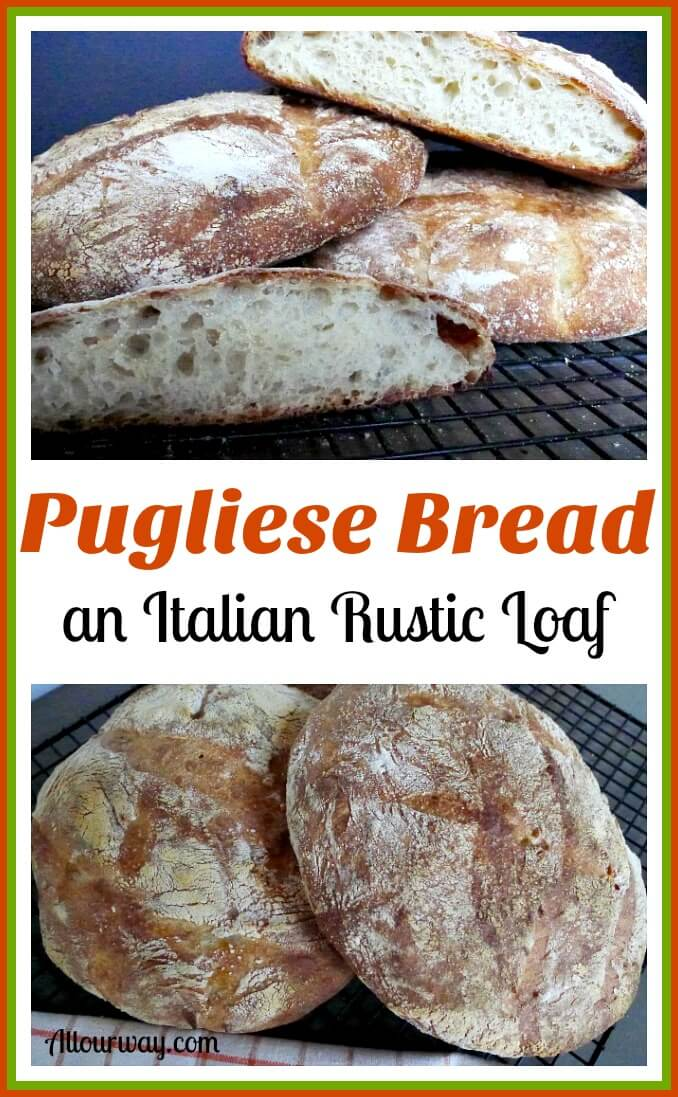 Pugliese bread a rustic Italian loaf that is delicious and chewy perfect for dunking @allourway.com