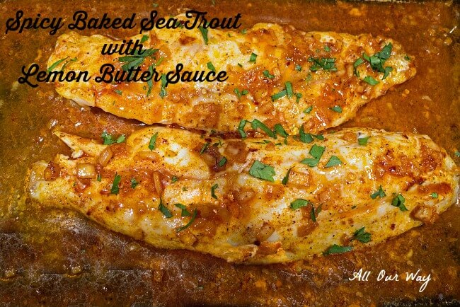 Spicy Baked Sea Trout with Lemon Butter Sauce @allourway.com