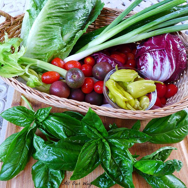 Romaine, scallions, celery, red and purple tomatoes, radicchio , peperoncini in straw basket with springs of fresh basil in front.