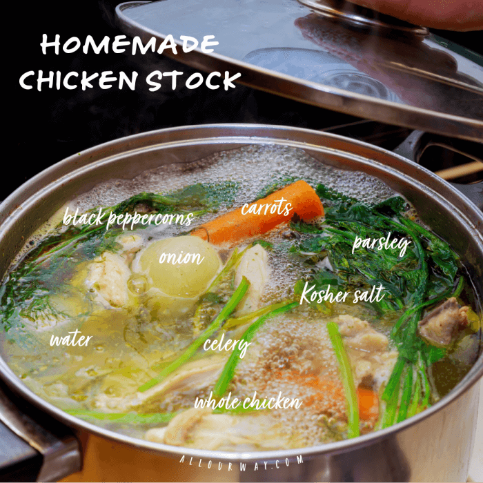 Large stock pot filled with ingredients to make chicken soup
