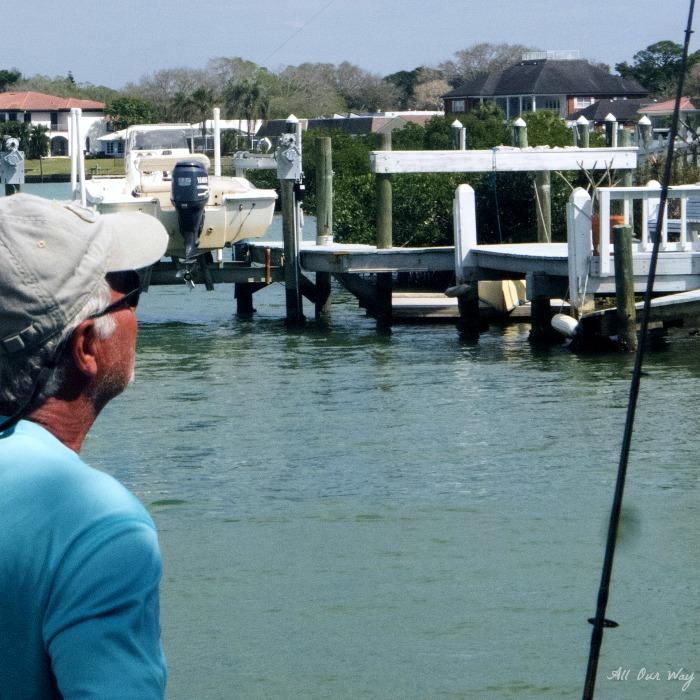 Arrivederci Venice Florida Higel Park