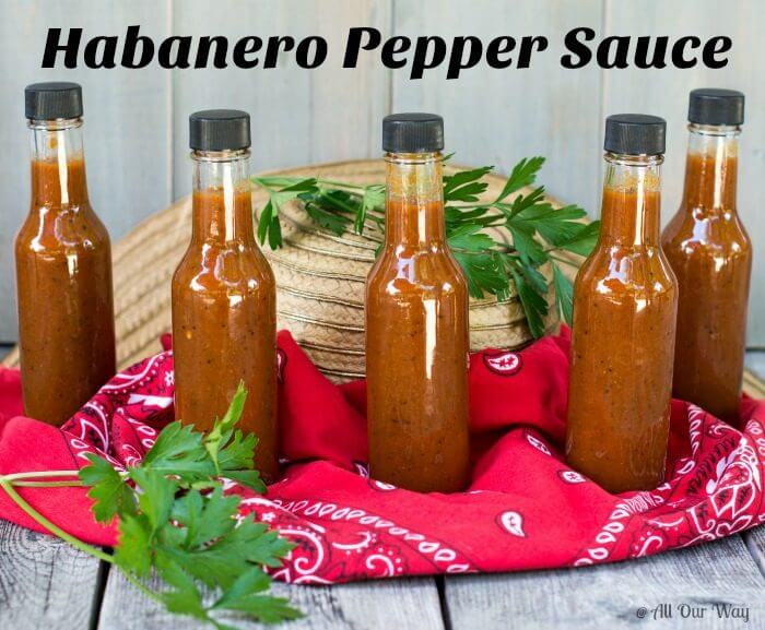 Five bottles of red Light My Fire Habanero Pepper Sauce sit on a red bandana with a straw hat and two sprigs of green parsley.